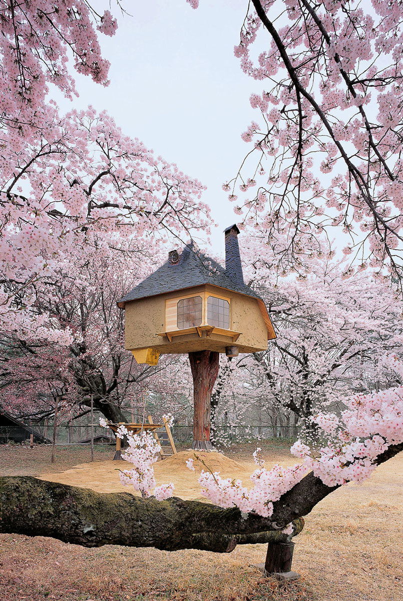 10 dintre cele mai spectaculoase case in copac din lume