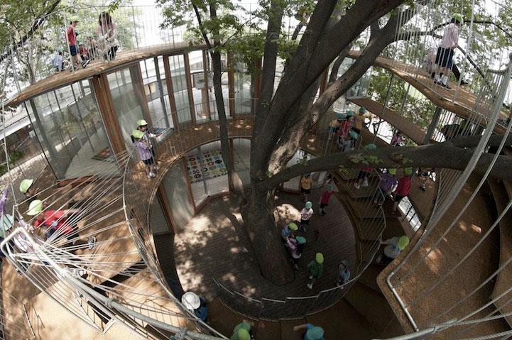 gradinita-in-jurul-unui-copac2