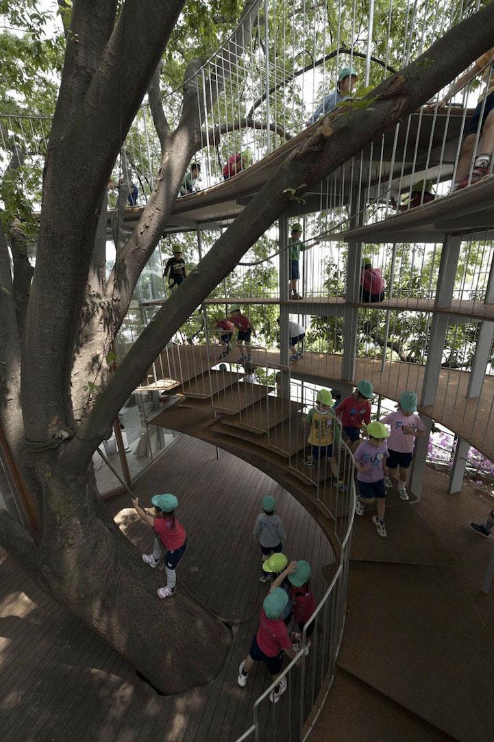 gradinita-in-jurul-unui-copac3