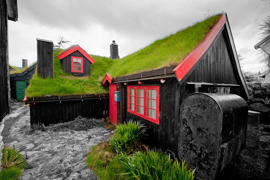 casa cu acoperis verde 4