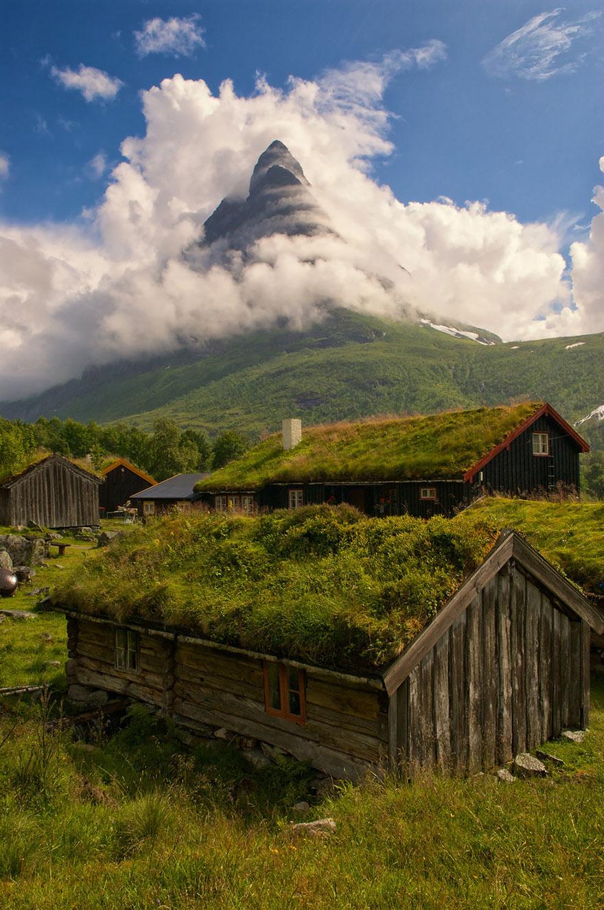 casa cu acoperis verde 8