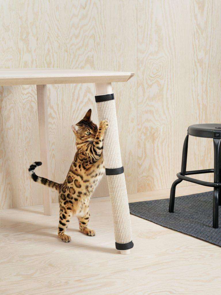 covoras zgarieturi pisici