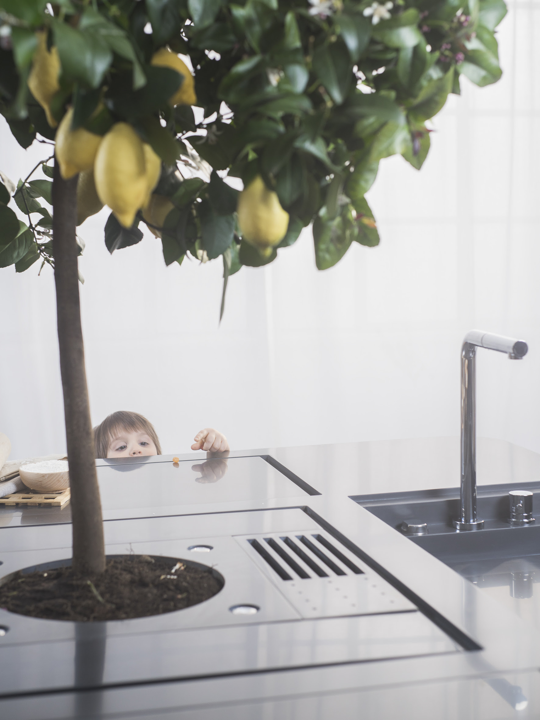 bucătărie originală cu lămâi