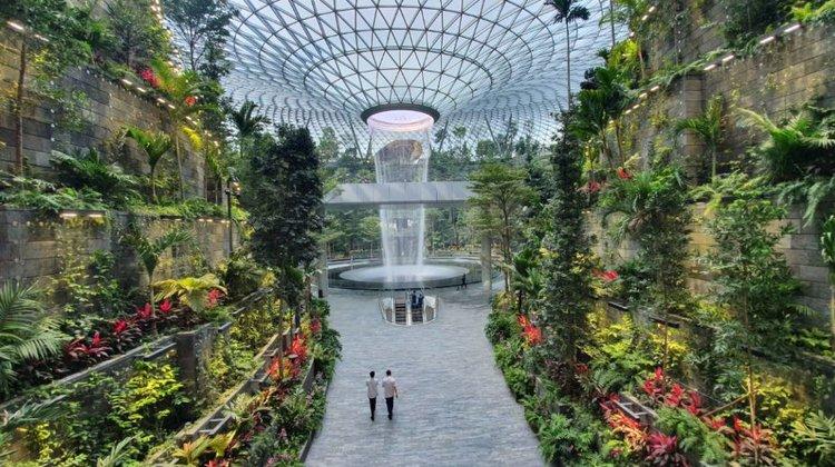 aeroportul Changi gradini tropicale