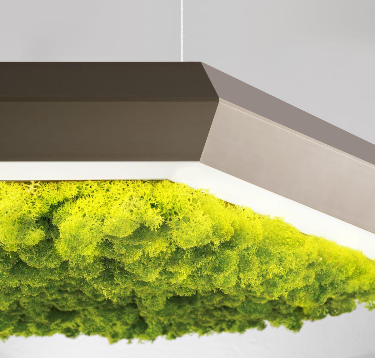 izolarea fonică Exagon Silence Green
