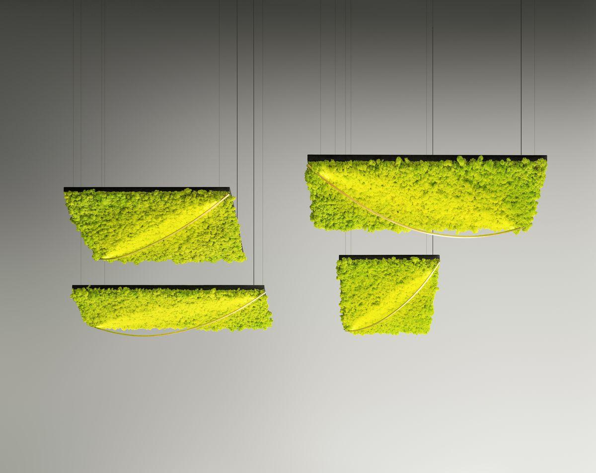 izolarea fonică sisteme de iluminat cu licheni