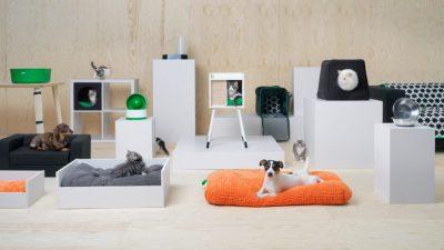 IKEA a lansat o colectie de mobilier pentru animalele de companie