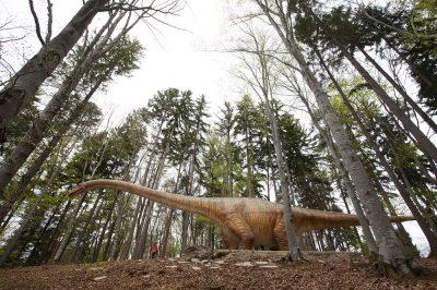 Vino la Dino Parc Râșnov să vezi cel mai mare dinozaur din lume
